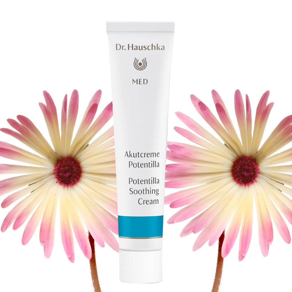 Dr Hauschka Potentilla Soothing Cream 20ml (perfect for dermatitis)