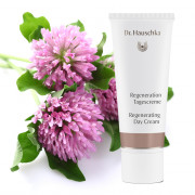 Dr Hauschka Regenerating Day Cream 40ml