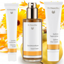 Dr Hauschka Bundle Normal Skin
