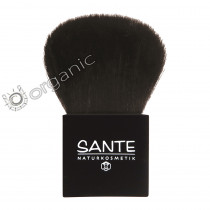 Sante Powder Brush